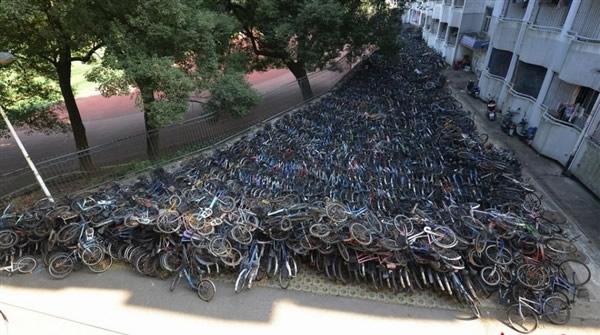 自行车坟场